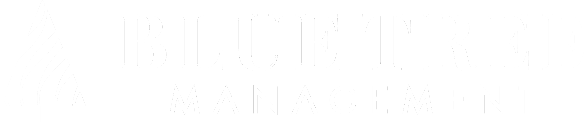 Blue Tree Management